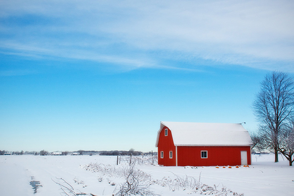 winter-barn-600.jpg